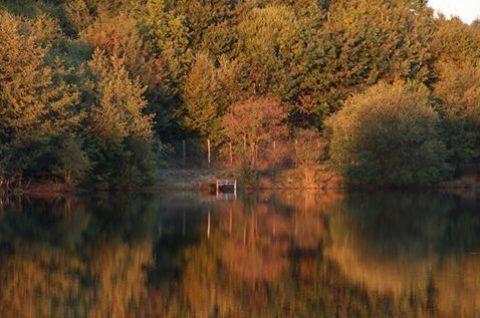 Lac de la Grange fishing lake France