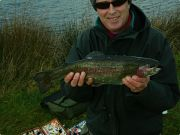 trout caught at Fron Farm Fishery