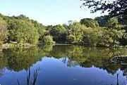 self catering fishing holidays at Wagland Farm, Totnes, Devon, England
